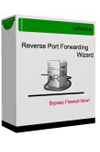 Reverse Port Forwarding Software